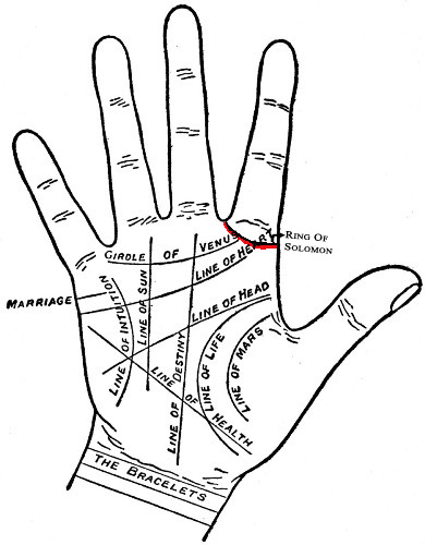 And The Hand Lines In Your